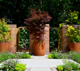 Copy of David Keegan Garden Design Worsley Project 2016 (4)[1].JPG
