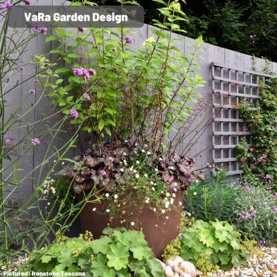 VaRa Garden Design.jpg