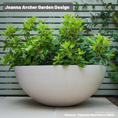 Joanna Archer