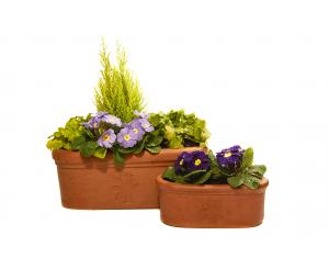 Thrive Anniversary Trough Planter Set