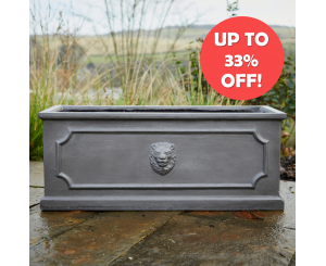 Lion Head Trough
