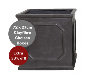 Bulk Buy: Clayfibre Chelsea Box