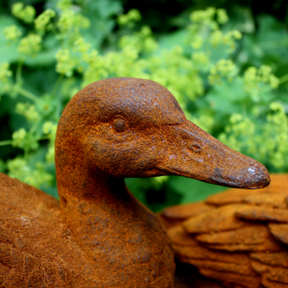 Puddle Duck Statue Image