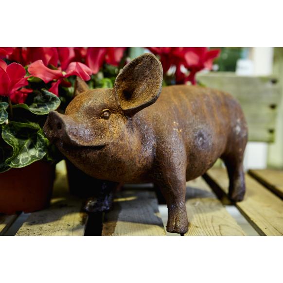 Standing Piglet Statue Image