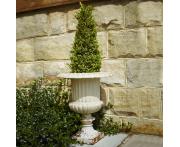 Fluted Venetian Straight Urn Planter Image