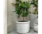 Antiqued Cylinder Image