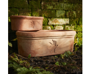 Thrive Anniversary Trough Planter Set Image